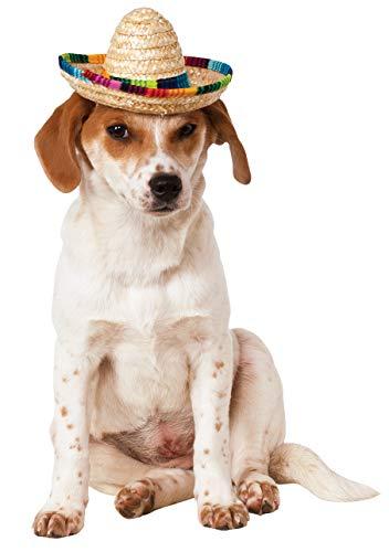 Rubie's Pet Sombrero Hat with Multicolor Trim, Small/Medium