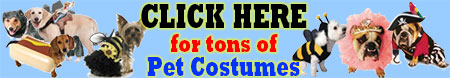 Pet Costumes Banner